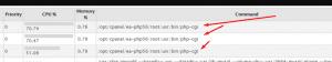 Cara menghilangkan proses /opt/cpanel/ea-php56/root/usr/bin/php-cgi