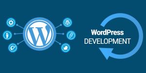 Web WordPress saya sudah tidak bisa di shared hosting ?