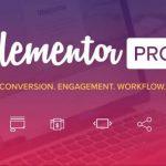 Hosting Yang Support untuk Elementor Pro